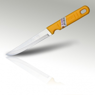 5'' Steak Knife Plastic Handle